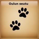 urosporssi_tassut_oulu